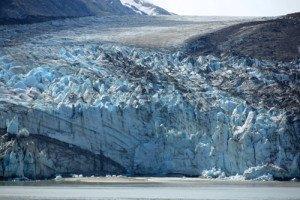 Cruise-Glacier-bay-Lamplugh