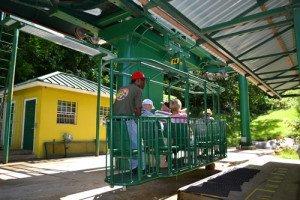 Cruise-St.Lucia-jungle-ride