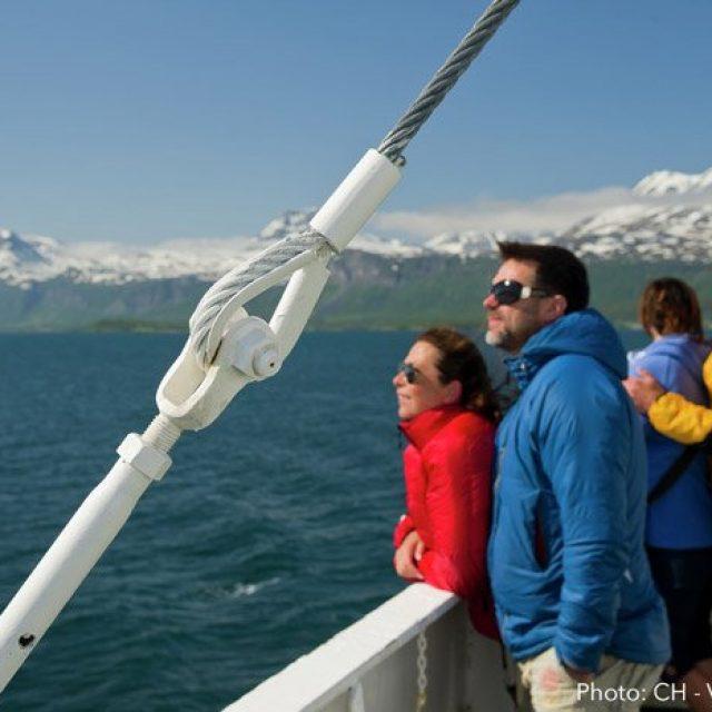 Scenic cruising Tromsø